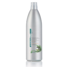 OYSTER SUBLIME FRUIT DETANGLING OLIVE SHAMPOO (FOR WAVY AND CURLY HAIR) 1000ML