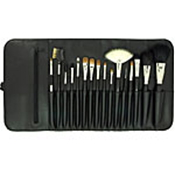 DA VINCI PROFESSIONAL BRUSH KIT 16PC