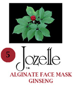5.JOZELLE ALGINATE FACE MASK 500g/ GINSENG - PROVIDES NUTRIENTS TO SKIN