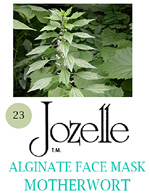 23.JOZELLE ALGINATE FACE MASK 250G /MOTHERWORT-STRENGTHENS & RE-ENERGISES SKIN