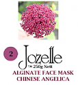 2.JOZELLE ALGINATE FACE MASK 1KG / CHINESE ANGELICA-FOR PIGMENTED SKIN