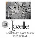 13.JOZELLE ALGINATE FACE MASK500G /CHARCOAL-ABSORBS EXCESS OILS, CLEANSING