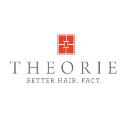 ELECTRIC STRAIGHTENERS THEORIE