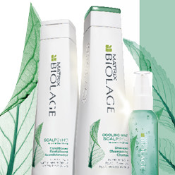 MATRIX BIOLAGE SCALPSYNC (FOR DANDRUFF / SCALP TREATMENT)